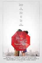Vign_DIA_DE_LLUVIA_EN_NY